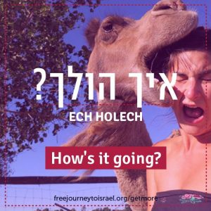 Slang Words for Your Year in Israel